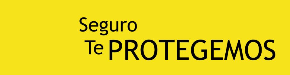 SEGURO TE PROTEGEMOS 2-47