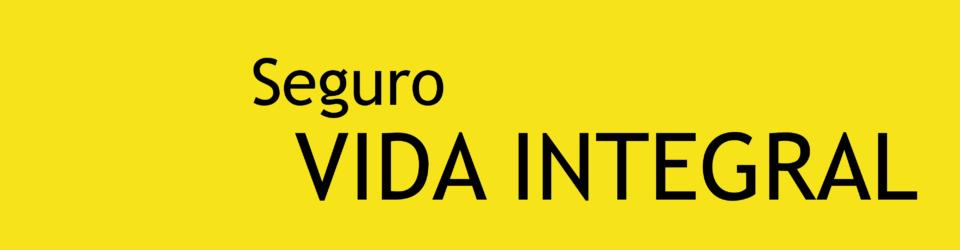 SEGURO VIDA 2-43